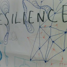 resilient lawyers